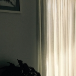 sheer-curtains-melbourne-IMG_0569
